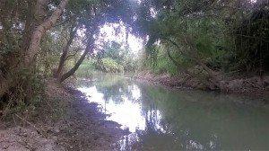 Algemesí Xopera riu