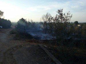 Rafelguaraf incendi barranc 17 2