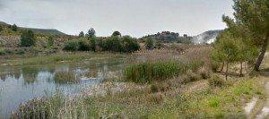 Bosc de Ribera a Sumacàrcer