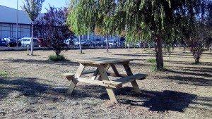 Algemesi zona picnic