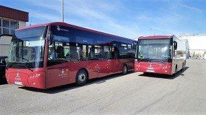 Autobus urbà alzira