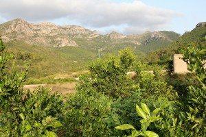 Vall de la Murta