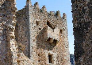 Murta Torre Coloms museu