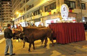 Sant Antoni és una festa molt arrelada a Alzira