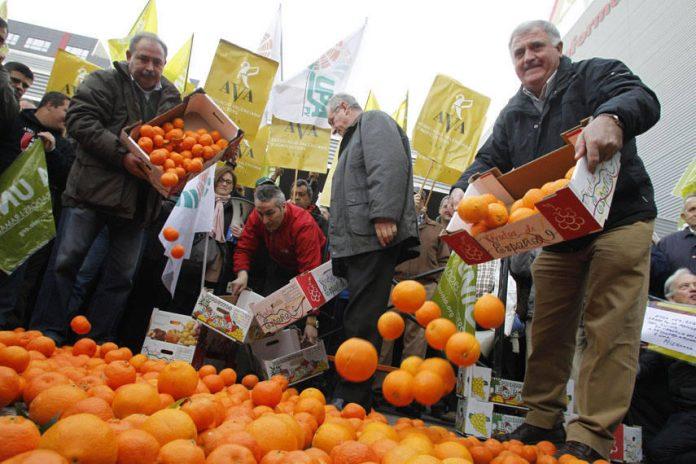 Els agricultors llançaran centenars de kg de taronges a les portes de la conse